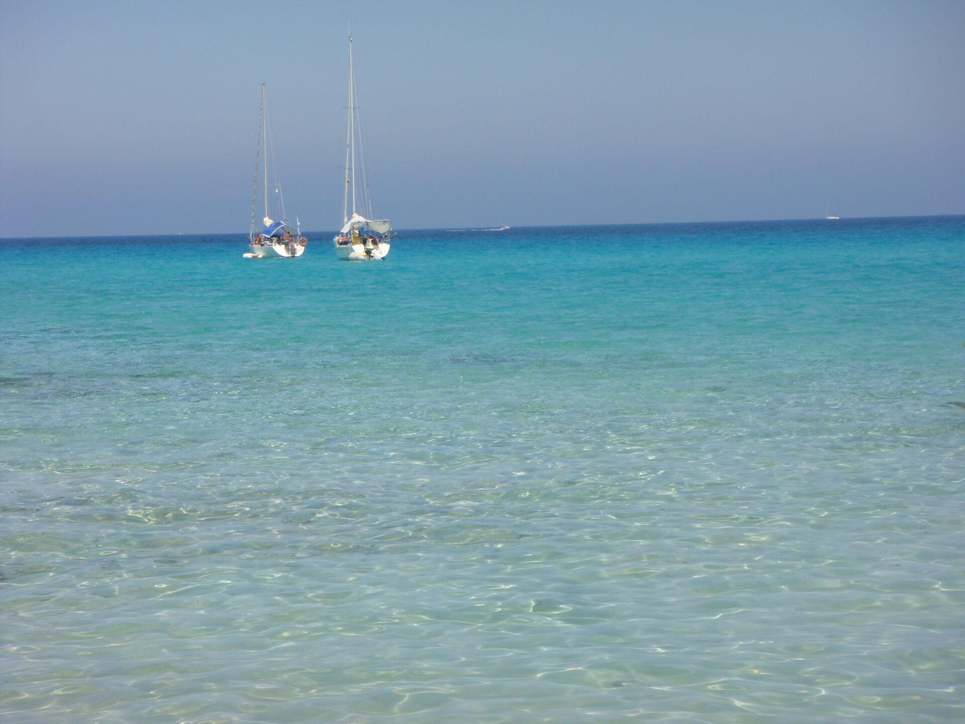 Surfcasting Corsica: Plage de Saleccia (Corsica)