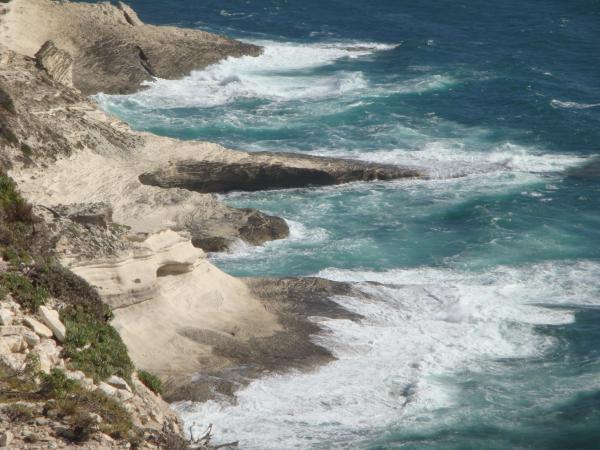 Come capire il mare: le correnti e l'accumulo detritico, prolifico o improduttivo