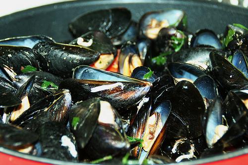 Menù di pesce: cozze, vongole, calamari e gamberi