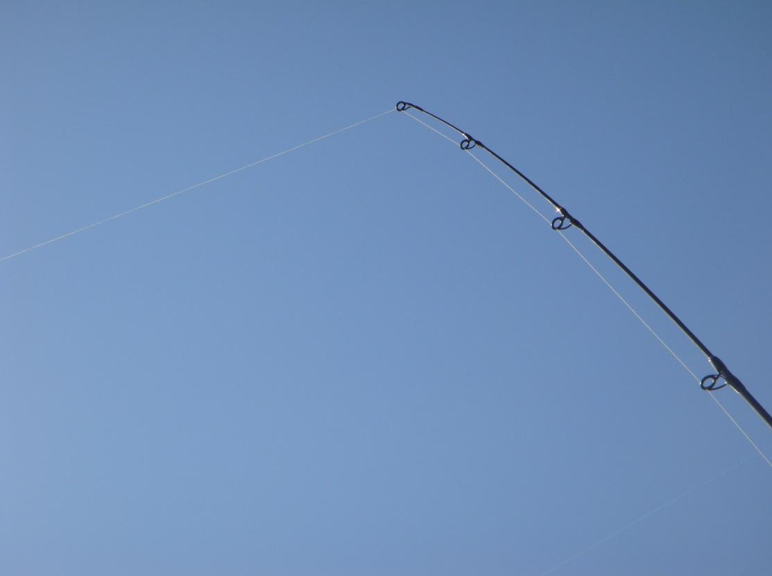 Pesca con il vivo: la teleferica