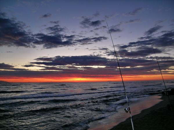 Come capire il mare: contare le onde per leggere il mare