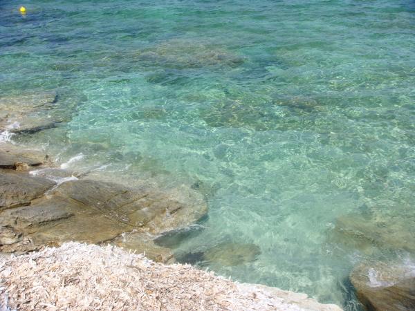 Come capire il mare: foci e spiagge a fondale misto