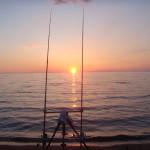 prevedere i movimenti dei pesci ci permettere di fare ottime battute di surfcasting