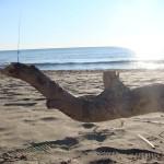capire il mare e il surfcasting