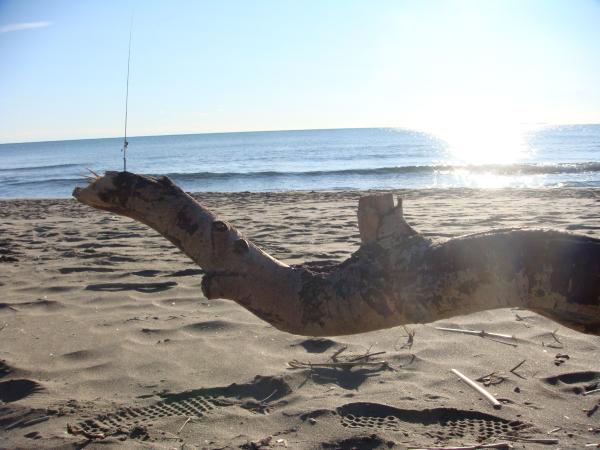 Come capire il mare: l'atteggiamento del surfcaster e conclusioni