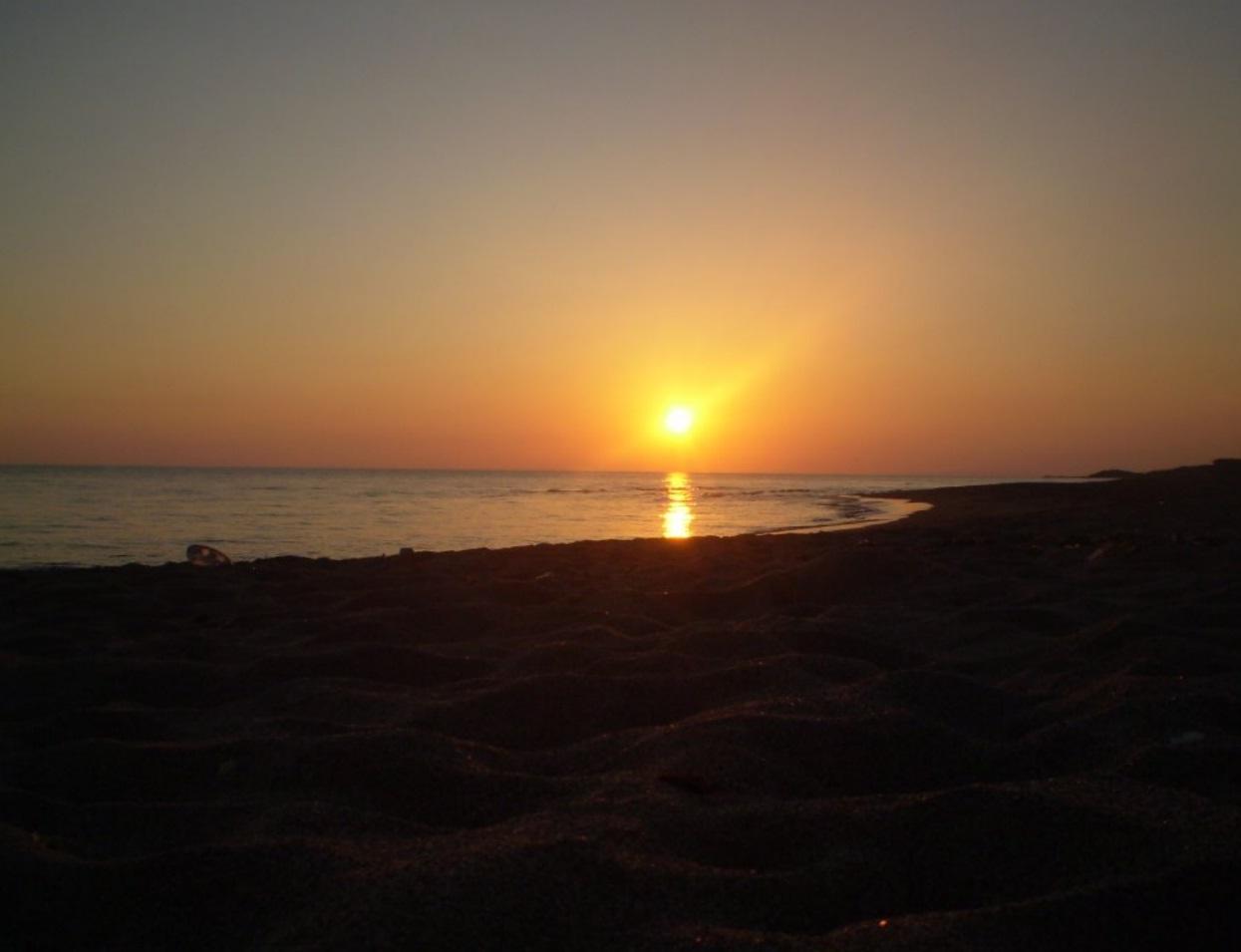 Surfcasting Lazio: Spiaggia di S.Agostino (Civitavecchia)