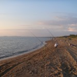 tante canne da surfcasting sulla spiaggia di giannella