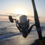 Gli Shimano Ultegra CI4 sono ottimi mulinelli per il surfcasting