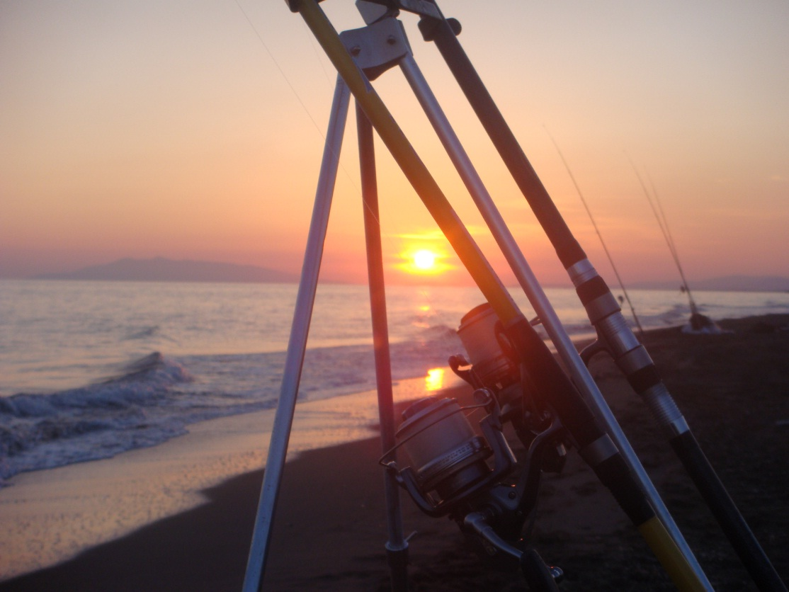Le misure minime dei pesci nel surfcasting