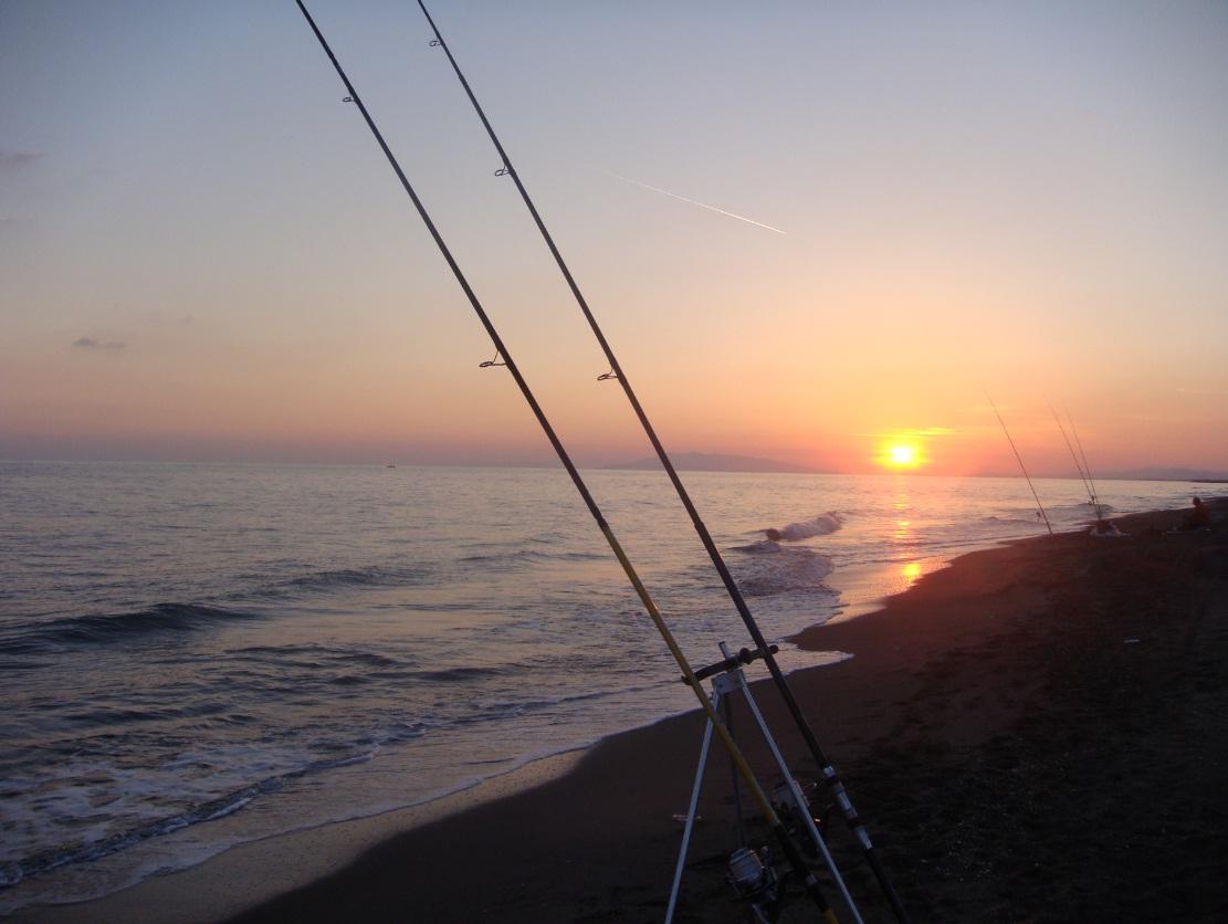 Surfcasting a Maggio: orata nel mirino