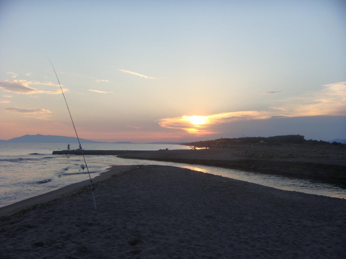 Nottata di piccoli gronghi a Pescia Romana