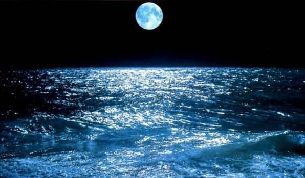 L'importanza dell'alta marea nella pesca dalla riva