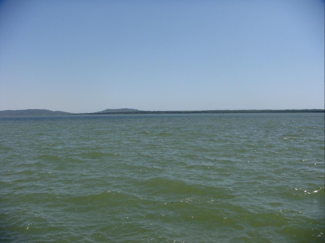 Pesca nella laguna di Orbetello