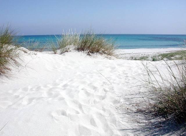Surfcasting Sardegna: Capo Comino
