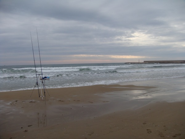 Canne da surfcasting