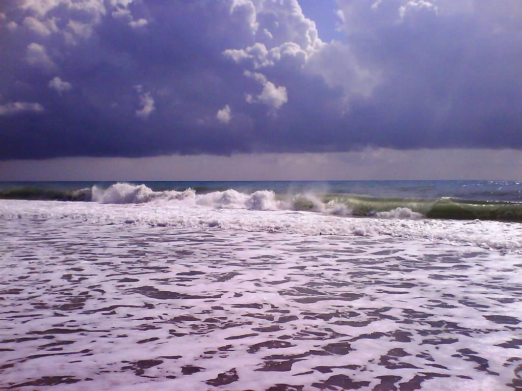 Surfcasting con libeccio