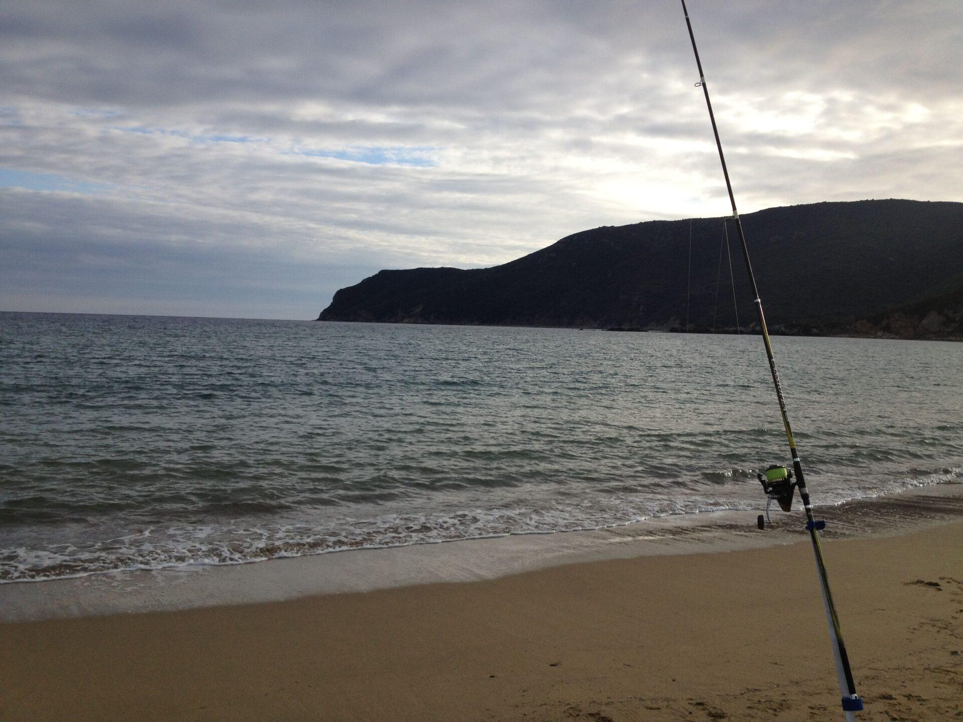 Surfcasting spiaggia di Lacona, isola d'Elba