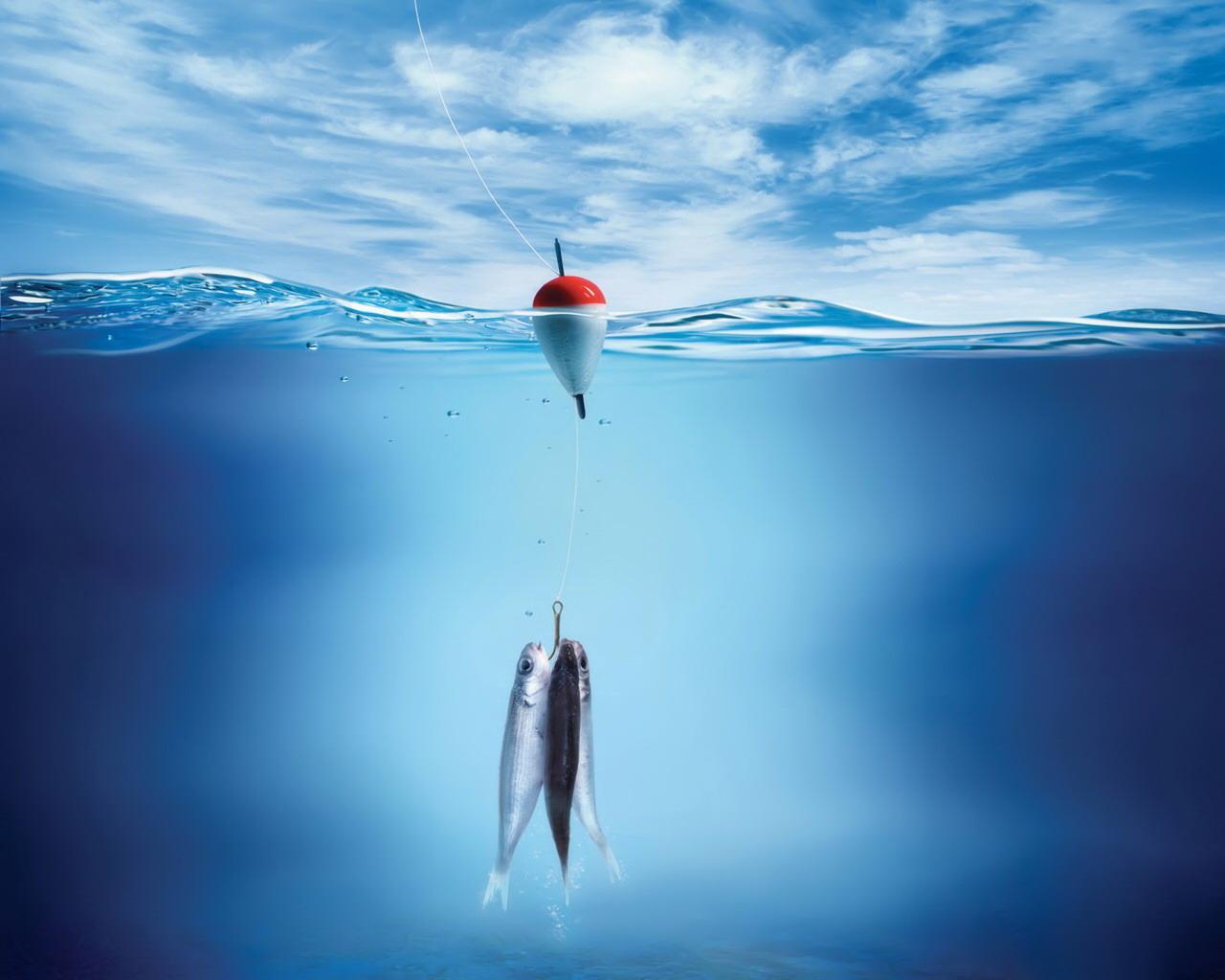 10+ sfondi per desktop con le meraviglie del mare