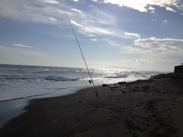 Surfcasting all'orata