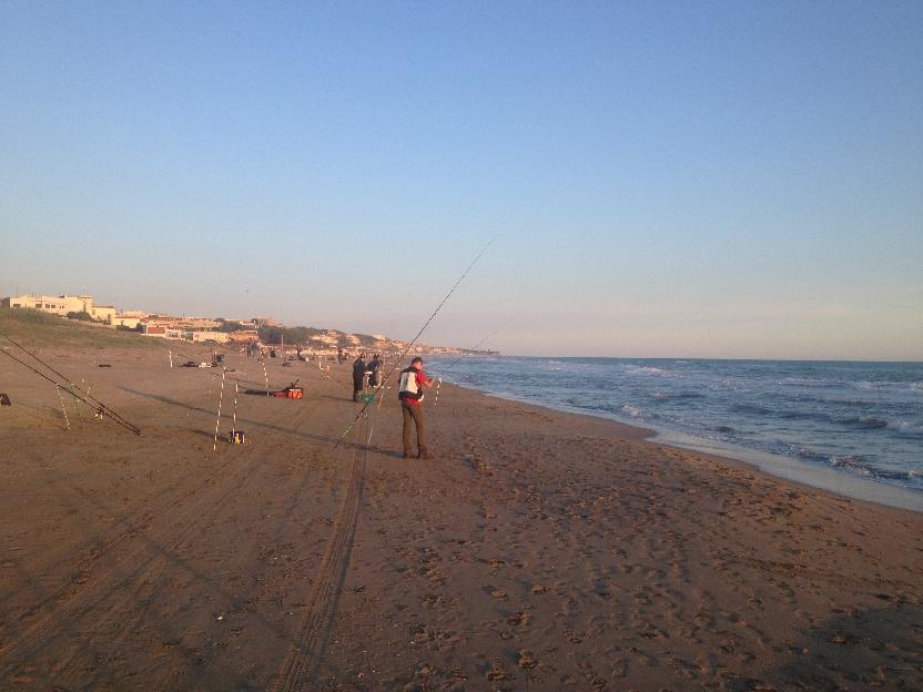 Provinciale surfcasting Roma 2014: prima prova