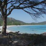 Surfcasting a Palombaggia – Corsica